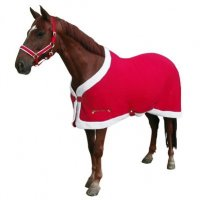 Christmas Horse Rug